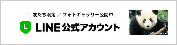 WWFジャパン LINE公式アカウント