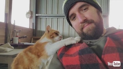 「Barn Cat Pats Man's Face Asking Him to Pet Them Some More - 1198559」