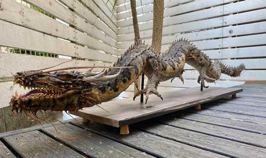 ダイソー のび〜る粘土 アート 造形 龍 実在 生物
