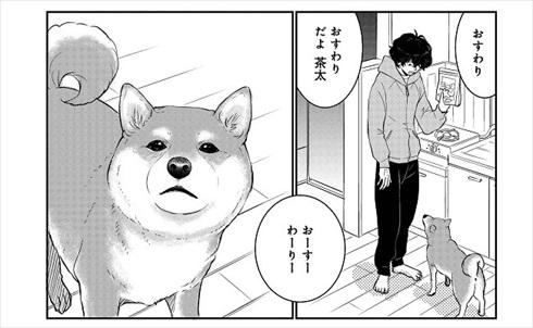 売れない漫画家と聞こえない犬の話