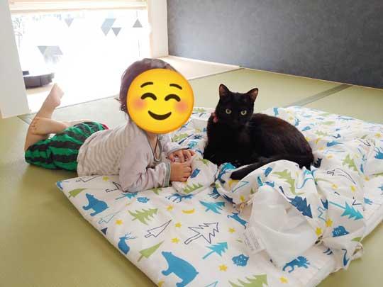 猫 子守り 2歳児 泣き止ませる お兄ちゃん 黒猫