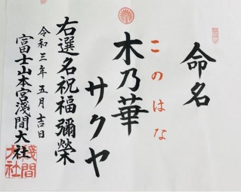 VTuber 静岡 コノハナサクヤヒメ