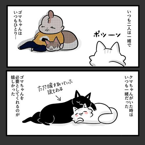 猫だって愛したい5