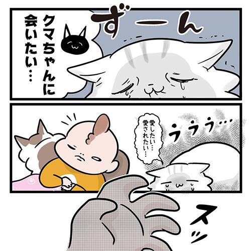 猫だって愛したい6