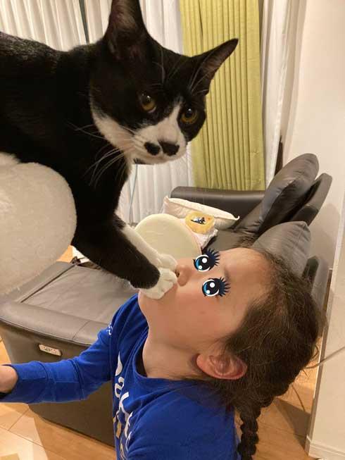 猫 鼻フック 娘 面白 ハプニング 仲良し
