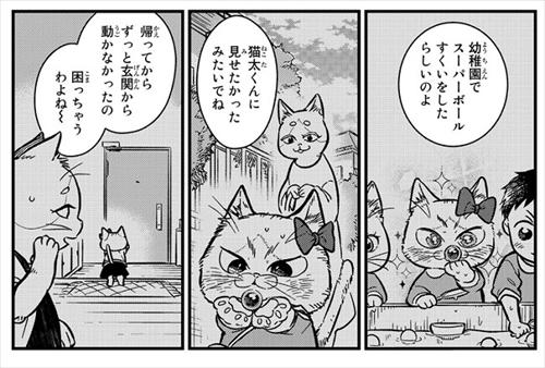 猫の妹がいる高校生男子