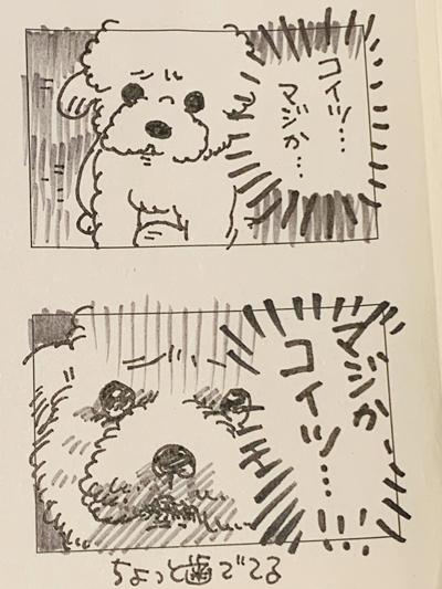 実家ワンコおやつ漫画2