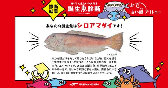 マルハニチロ 誕生魚診断 性格診断