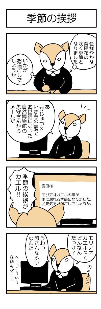 学芸員の観察日記