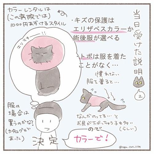 トポ避妊手術終編・当日4