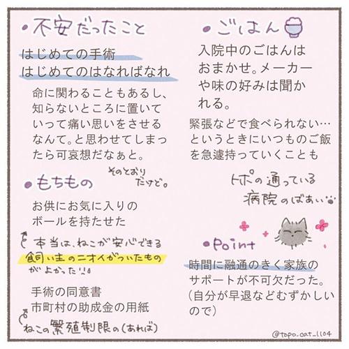 トポ避妊手術終編・当日8