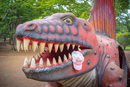 落ちた帽子 恐竜 食べられたみたい 茨城県 八坂公園