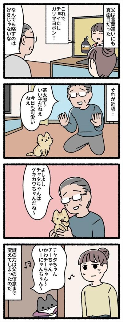 借りてきた猫