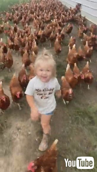 「Adorable Little Girl and Her Army of Chickens    ViralHog」