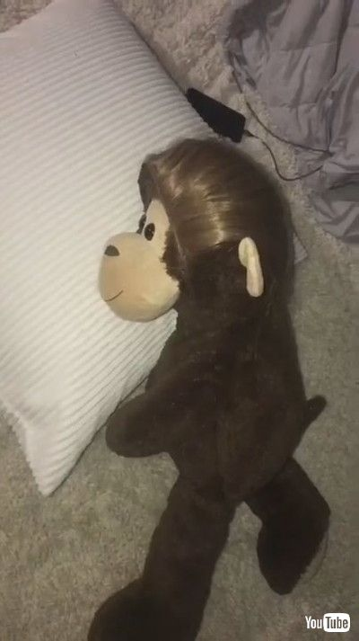 「Mom Makes Dummy of Herself With Stuffed Monkey to Trick Her Son to Sleep - 1211872」