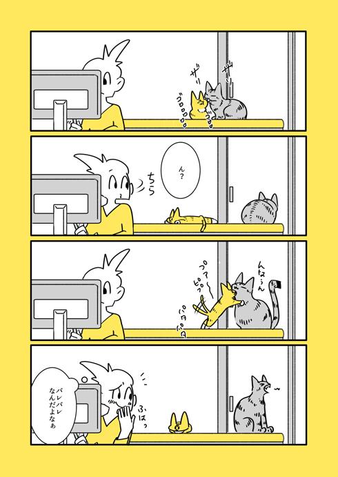 ほんとは仲良しな猫たち