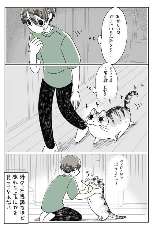 猫 ネコ どこにも見当たらない 漫画 キュルガ