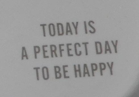 「今日は幸せになるのに最適な日です」 100均トレーで価値観を強要してくるディストピア飯がはかどりそう