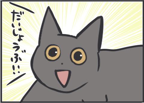 猫の気遣いを感じた時
