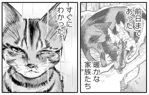 吾輩は猫であるが犬 沙嶋カタナ 漫画