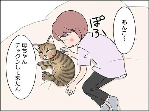 猫の癒やし2