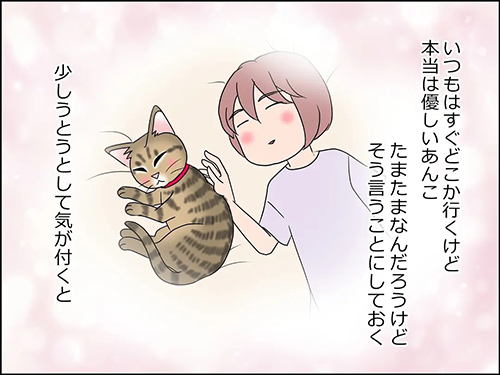 猫の癒やし3