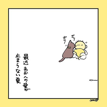 夏とあお8