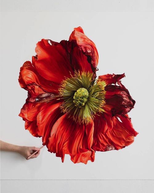 本物のようなリアルな花のアート
