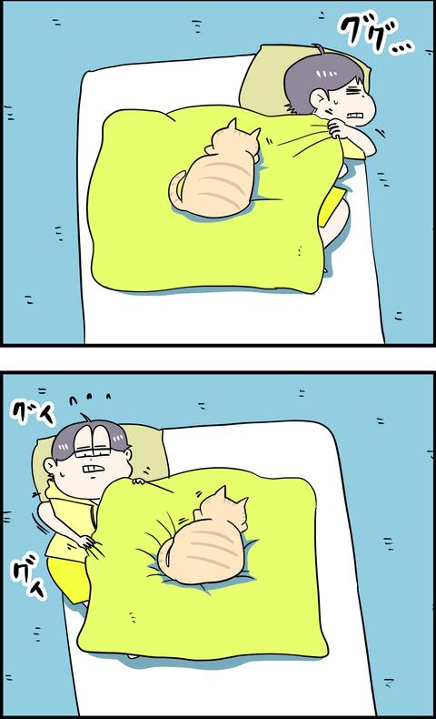 猫にチェックメイトされる日々2