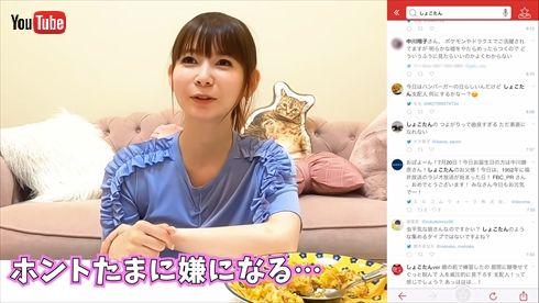 中川翔子 誹謗中傷 警察 被害者 加害者 YouTube