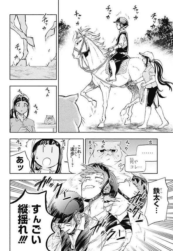 競馬漫画「白帝のエリカ」動物の声が聞こえる素人騎手が有能だけど人嫌いな馬に挑む 言葉の壁を越えた人馬一体の姿が感動的