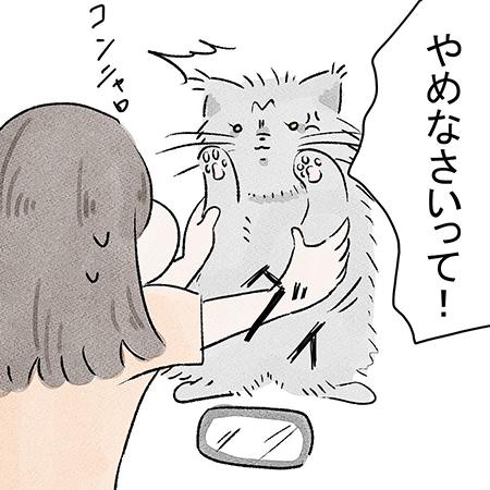 こっちゃんご乱心5