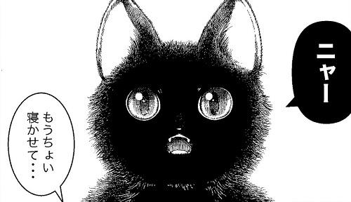黒猫ラッタと猫のヒト