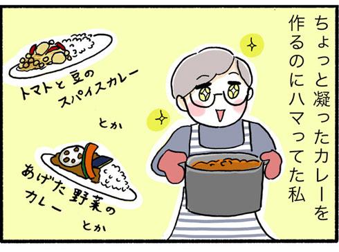 こだわりカレーを作る人の漫画