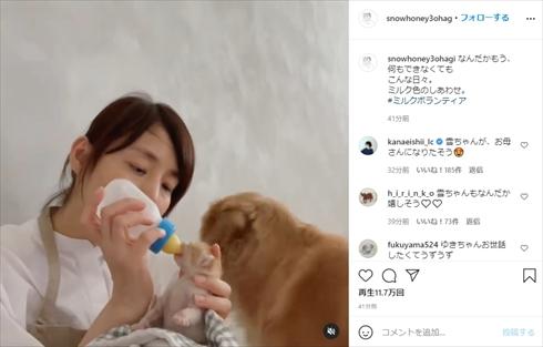 石田ゆり子 ミルクボランティア 子猫 保護猫 インスタ