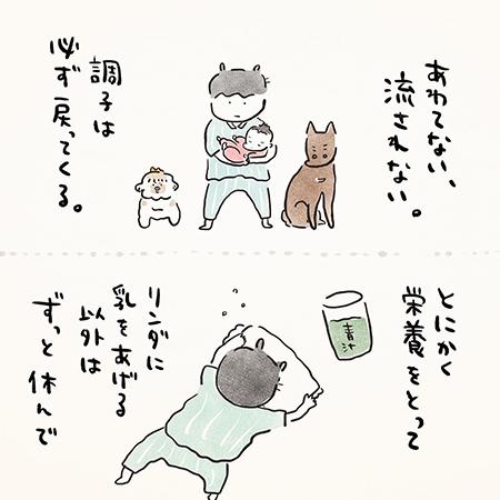 イヌ日記140.8