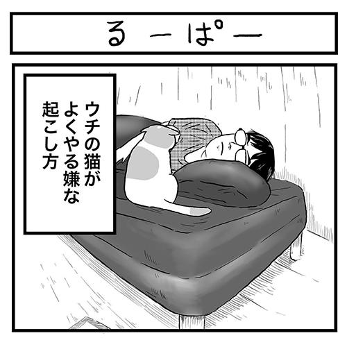 るーぱー1