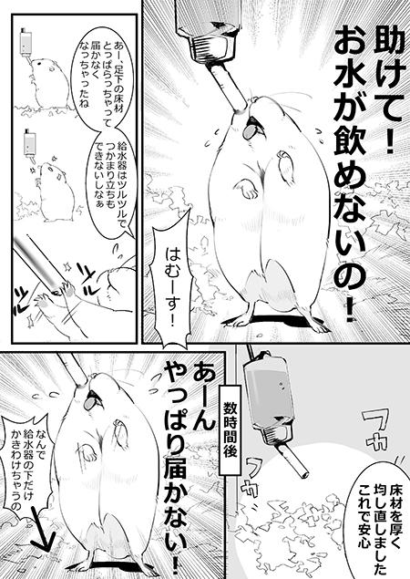 水飲みハムスター漫画1