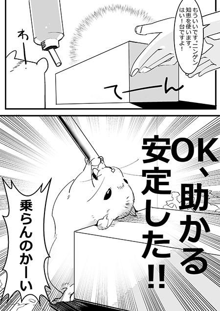水飲みハムスター漫画2