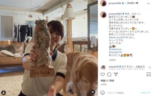 石田ゆり子 ペット ハニオ タビ 雪 猫 インスタ