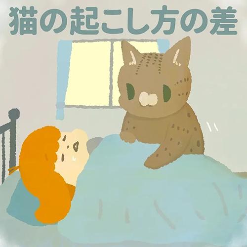 猫の起こし方の差1