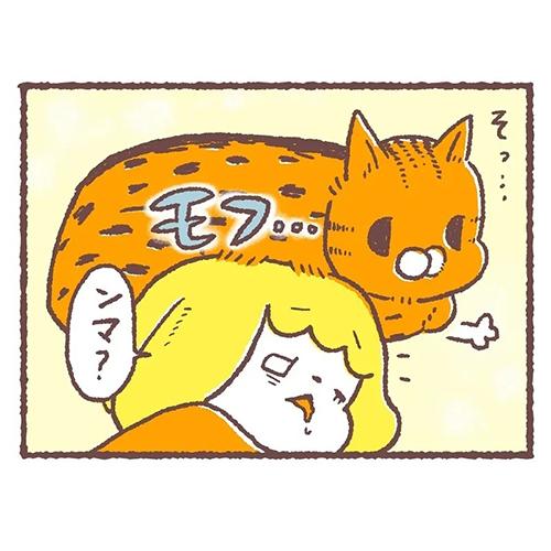 猫の起こし方の差3