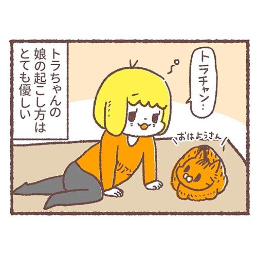 猫の起こし方の差4