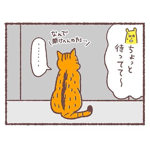 急に冷静になる猫3