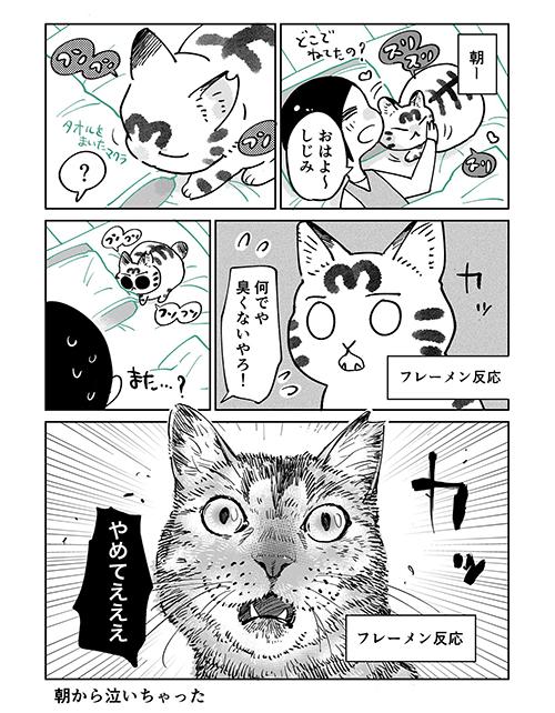 3本足のしじみちゃん147