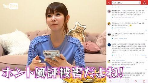 中川翔子 風評被害 逮捕 書類送検 誹謗中傷