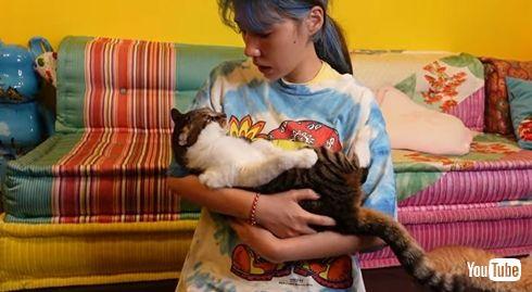 仲里依紗 子猫 きなこ おかか トカゲ