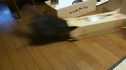 動画・残像ヤマトくん1