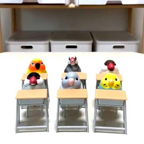 席に着く 文鳥 学校 着席 ミニチュア