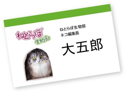 ネコ編集長 名刺